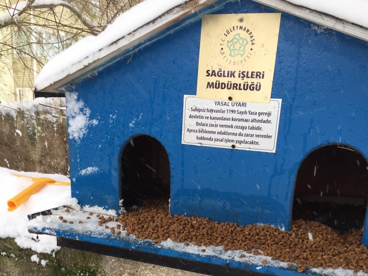 Süleymanpaşa Belediyesi sokak hayvanlarını unutmadı