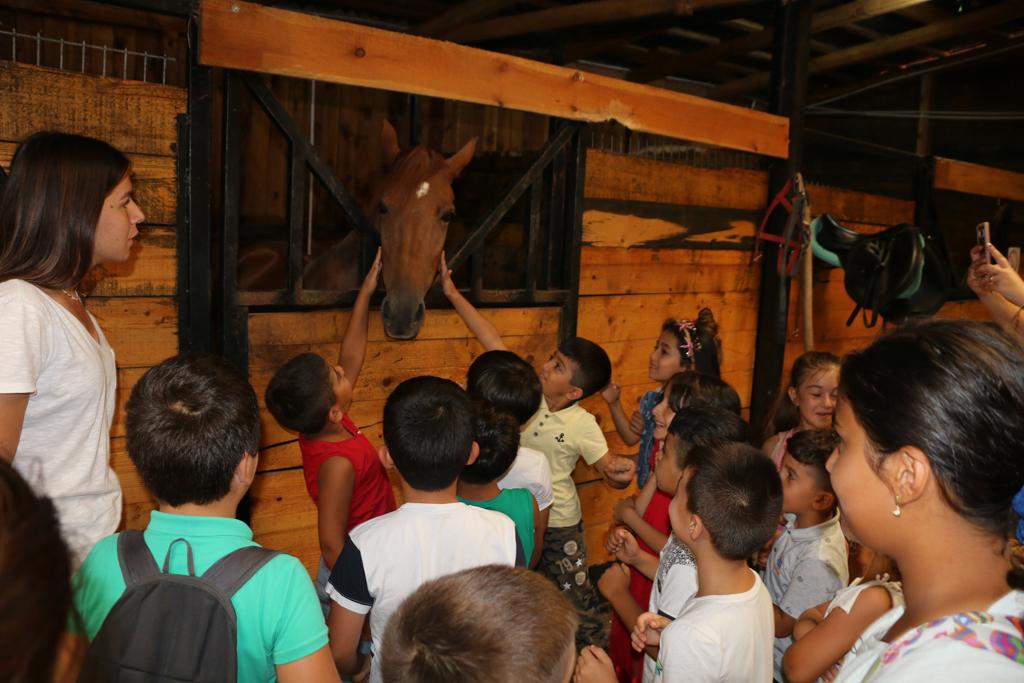 Yaz Okulu Öğrencilerine At Çiftliği Gezisi